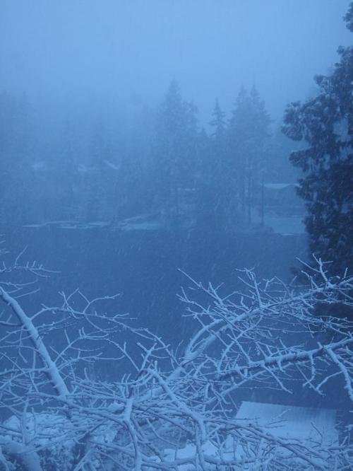 Blizzard 2012