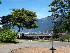 Yachts at Horseshoe Bay Canada